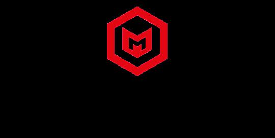Medienhochburg_Logo_raleway_Pfade